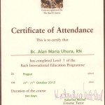 Certificate od Attendance L1